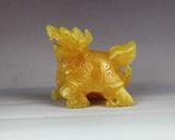 黄玉龙头龟
